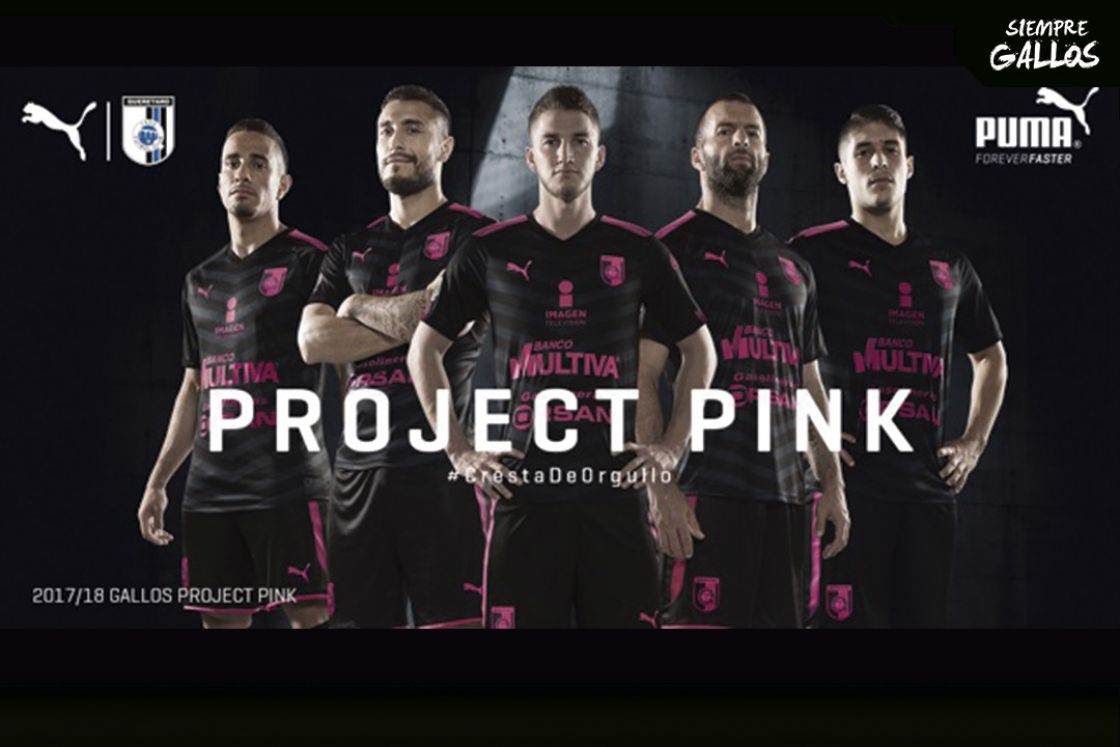 Gallos Project Pink